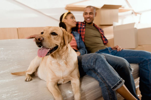 Kent's Home Movers Mortgage Experts